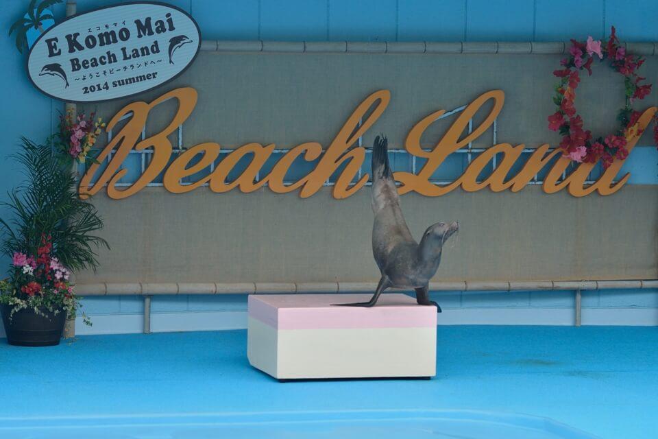 beachland-chita_7.jpg