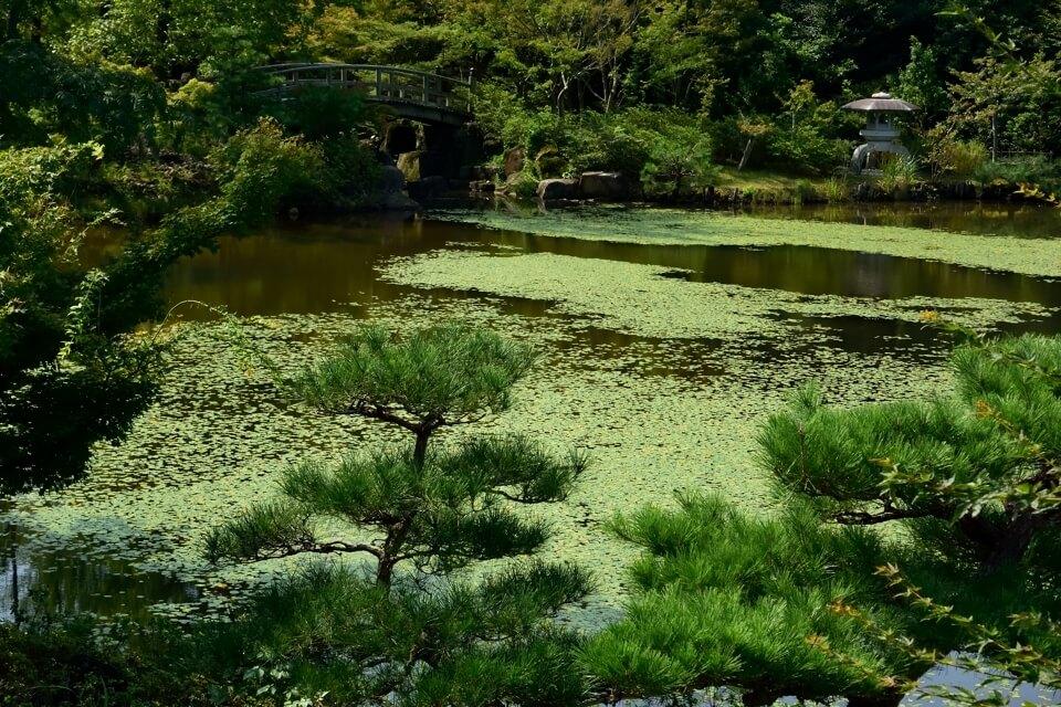 aichikyuhakupark_9.jpg