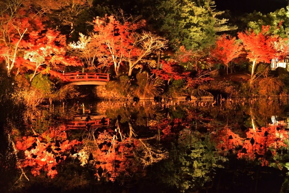 kyoto-koyo-trip_4.jpg