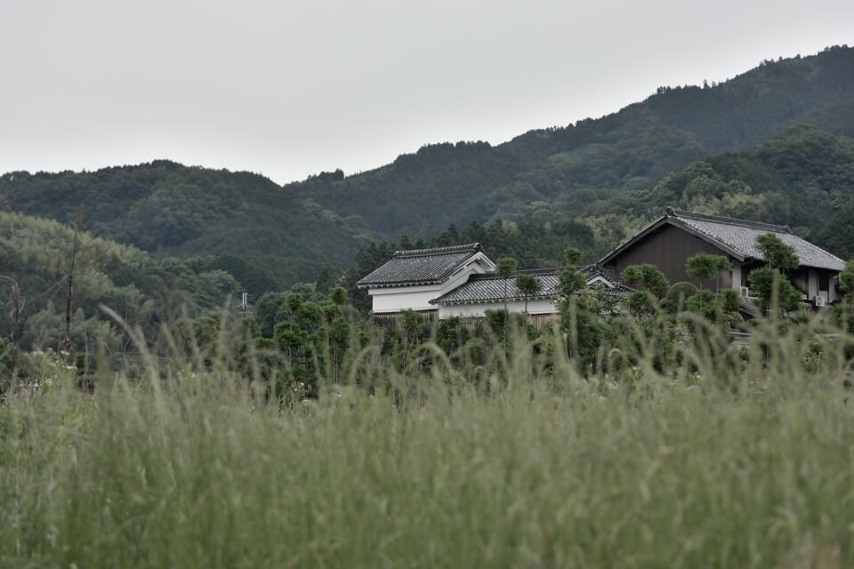 yamanobenomichi_8.jpg