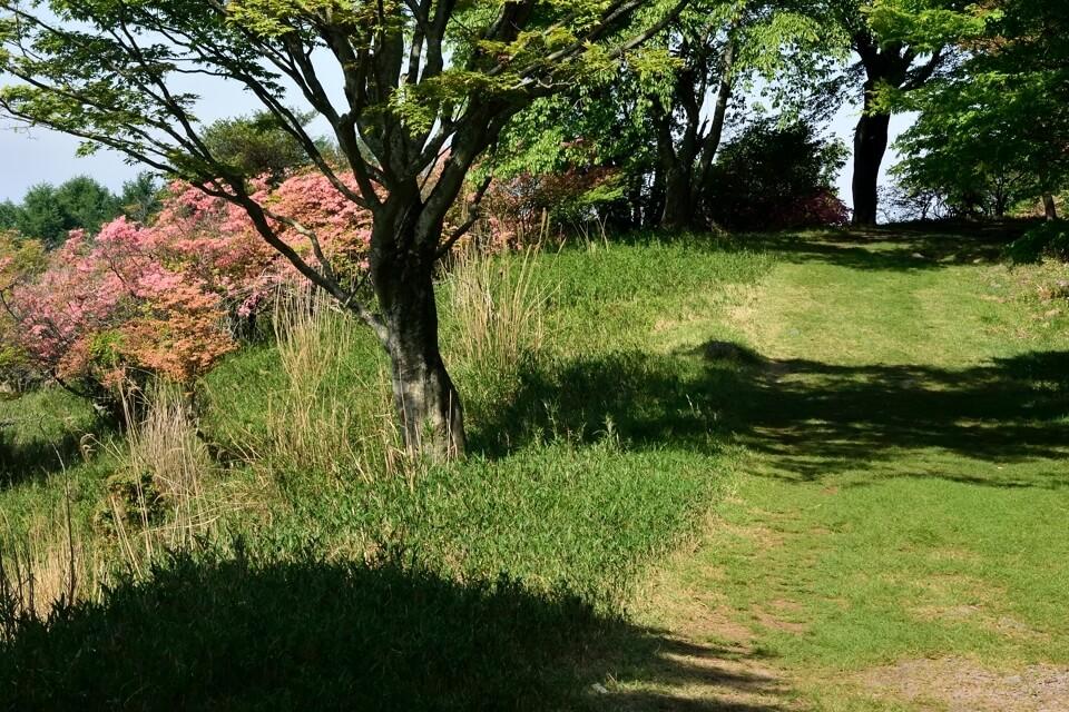 京都一周トレイル_北山コース1.jpg