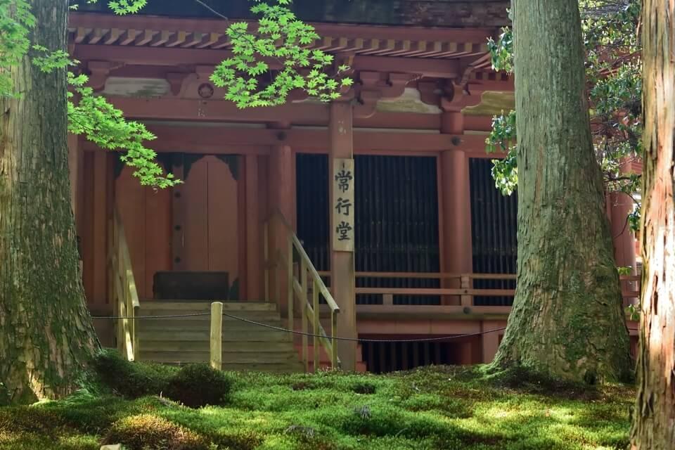 京都一周トレイル_北山コース3.jpg