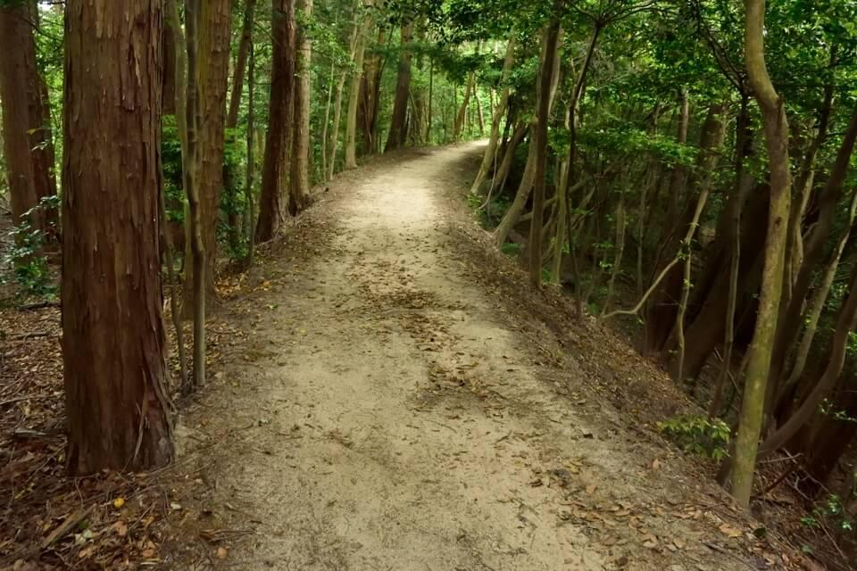 トレイルラン岡崎13.jpg