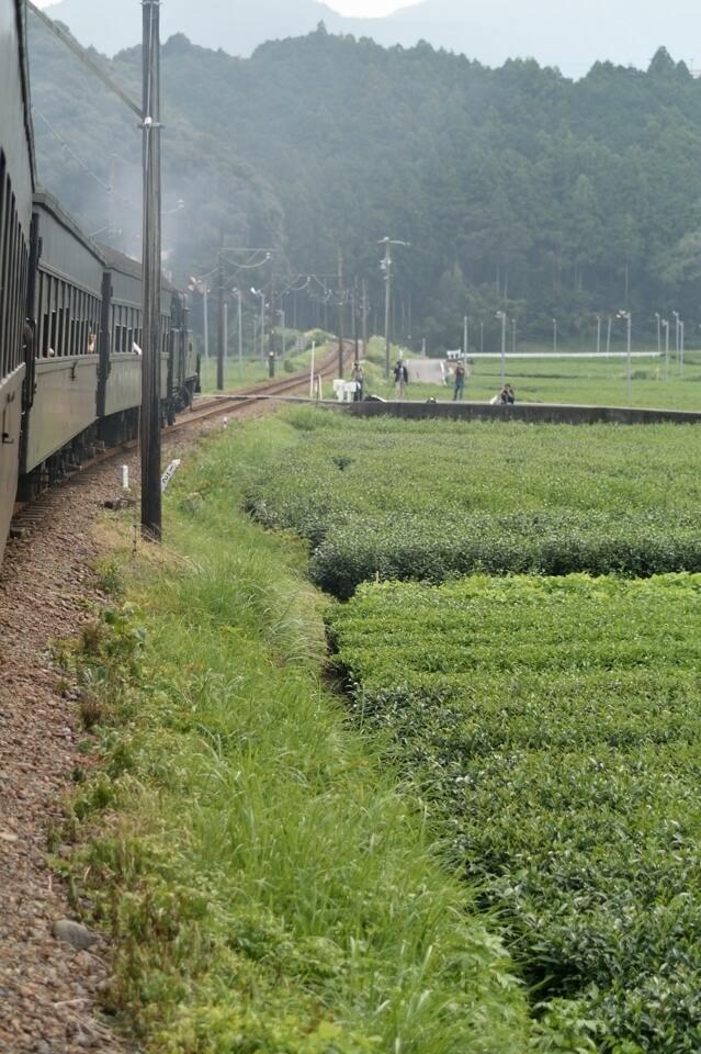 大井川鉄道 写真4.jpg