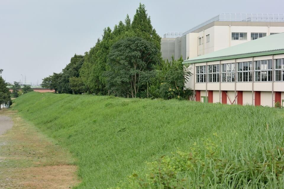 入間川サイクリングロード ランニング9.jpg