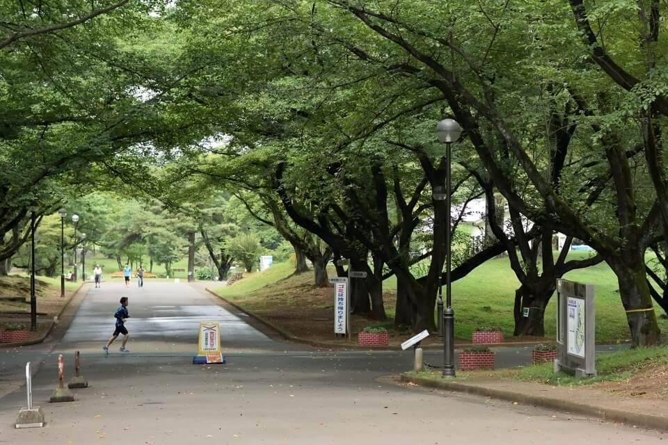 稲荷山公園 ランニング1.jpg