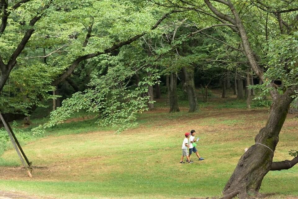 稲荷山公園 ランニング3.jpg