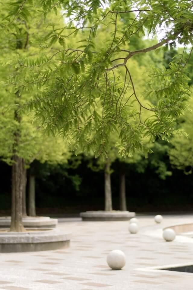 豊橋総合動植物園 写真3.jpg