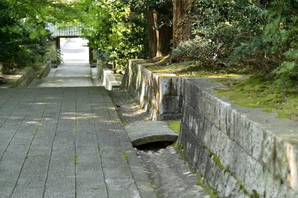 トレイルラン雲興寺9.jpg