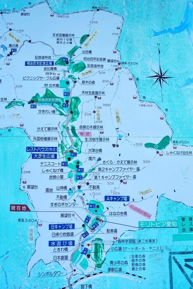 愛知県民の森トレイルランコース16.jpg