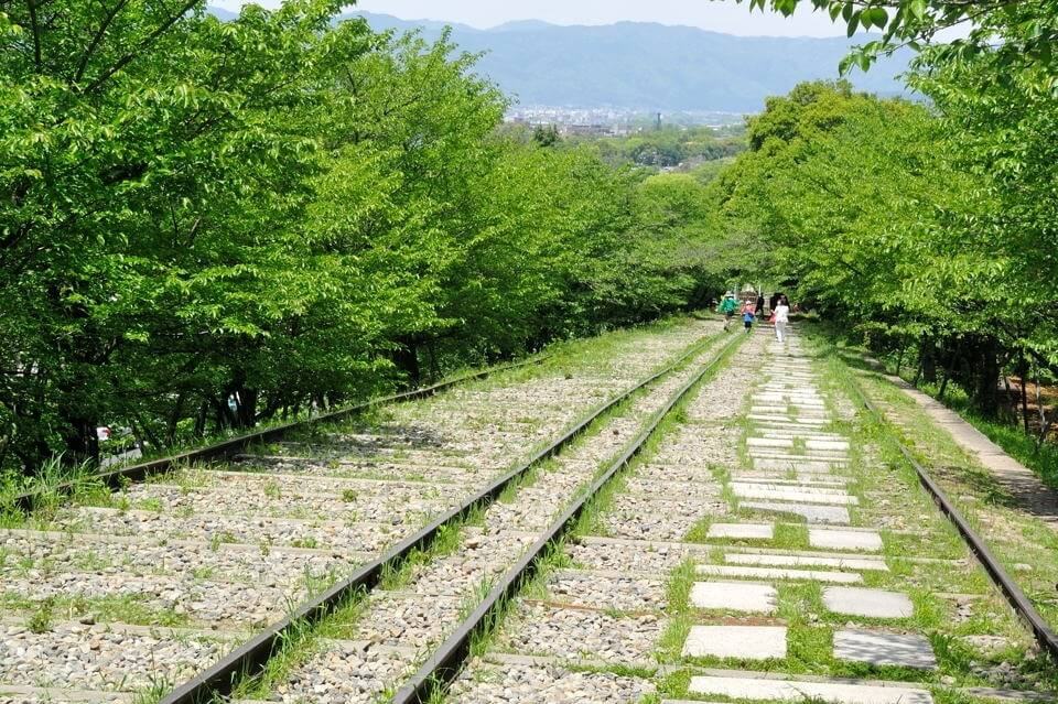 京都一周トレイルランニング東山コース9.jpg