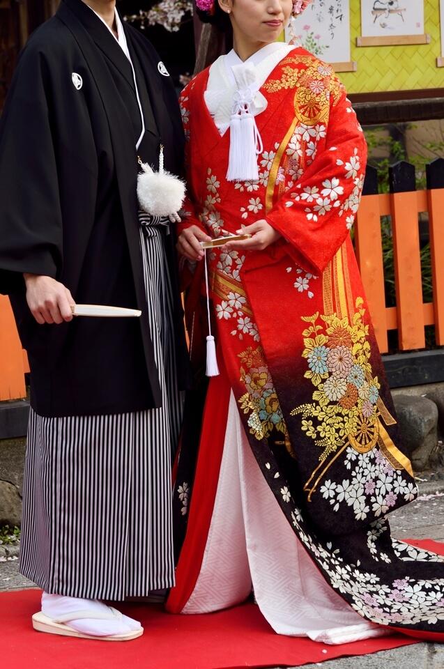 桜写真_祇園白川11.jpg