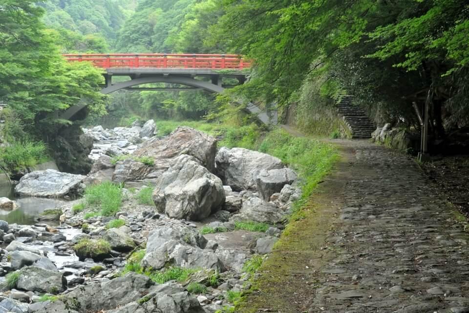 京都一周トレイル_西山コース16.jpg