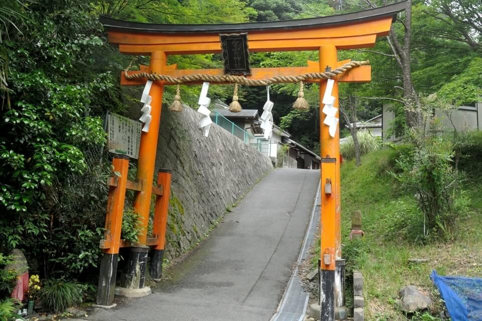 京都一周トレイル_西山コース17.jpg