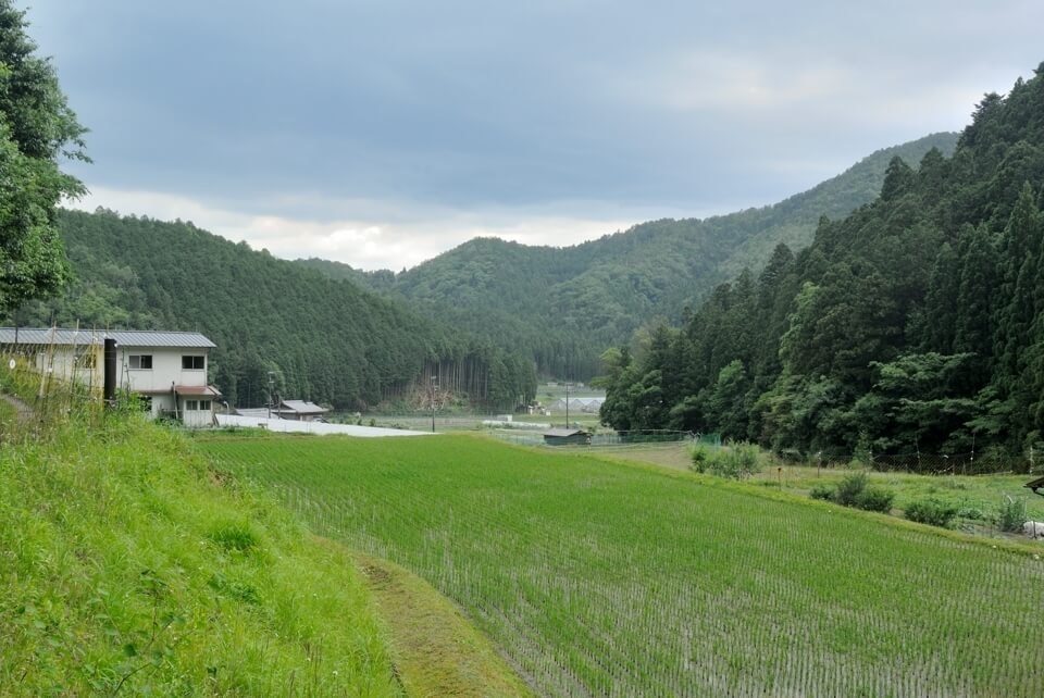 京都一周トレイル_西山コース38.jpg