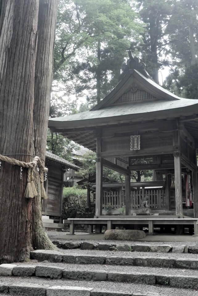 京都一周トレイル_西山コース39.jpg