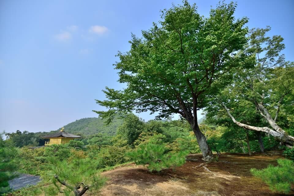 Kinkakuji-Photo2.jpg