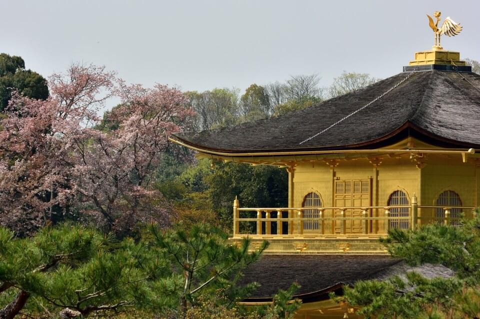 Kinkakuji-Photo5.jpg