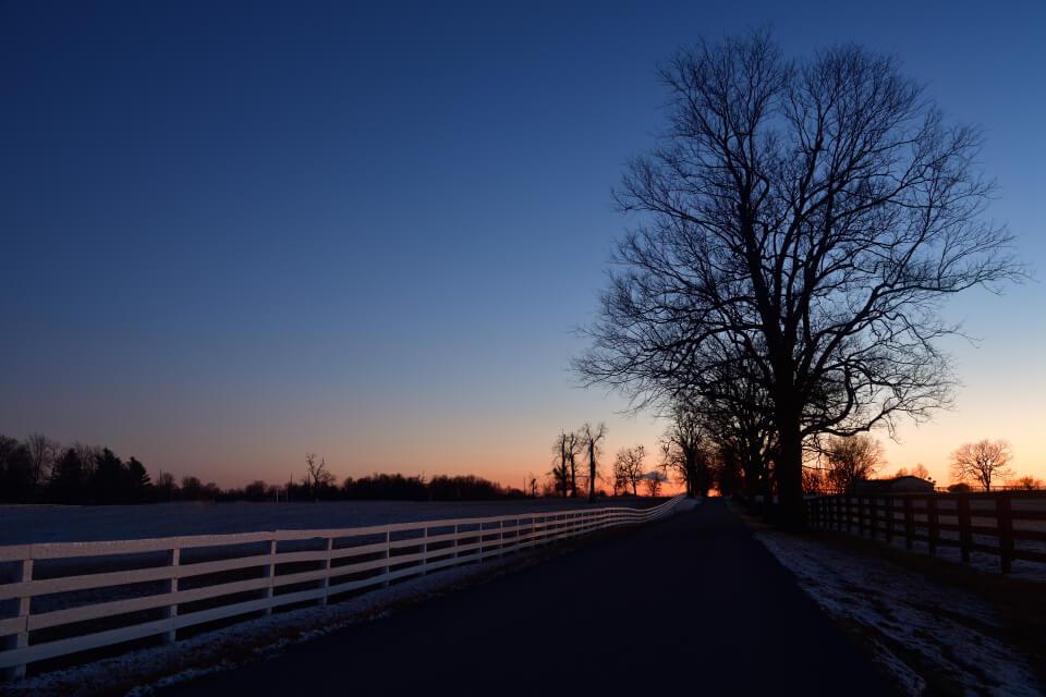 レキシントン夜景写真2.jpg