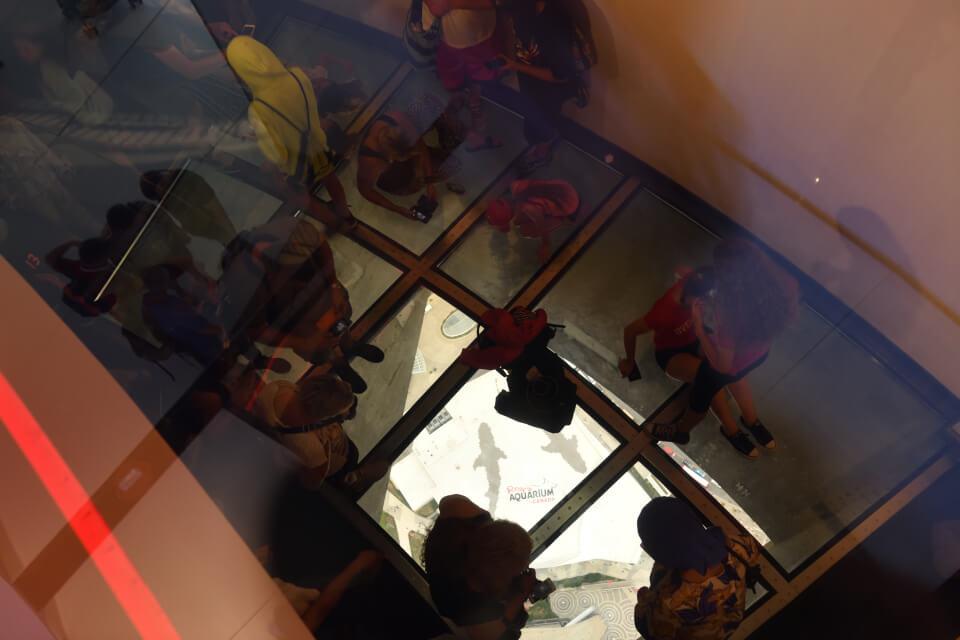 CNタワーグラスフロア写真7.jpg