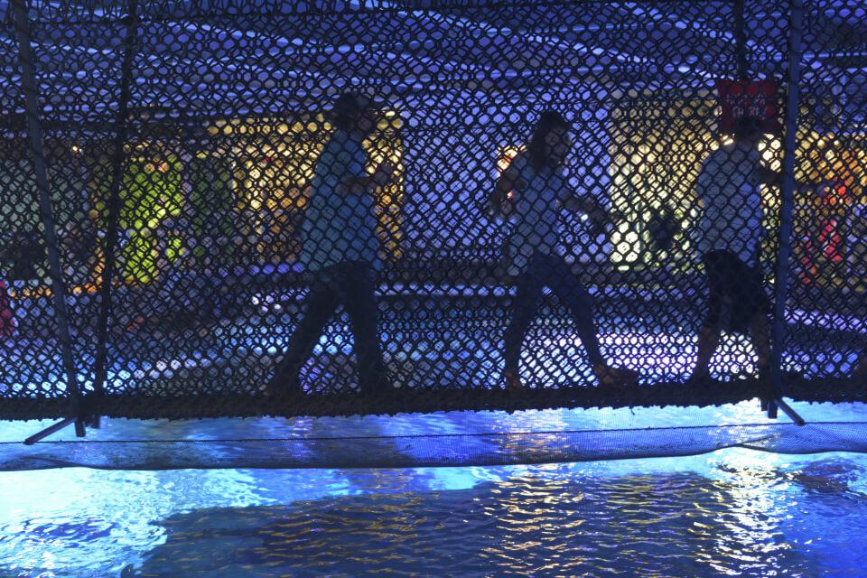 ニューポート水族館写真7.jpg