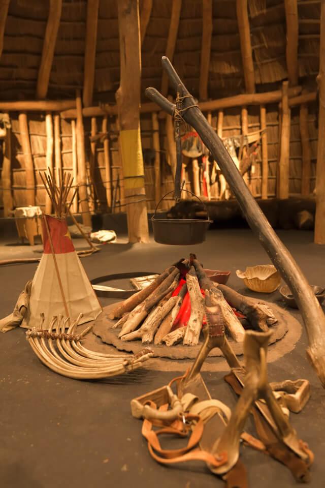 フィールド自然史博物館シカゴ6.jpg