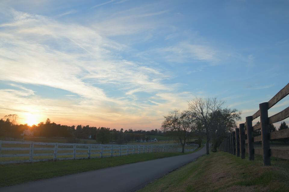 レキシントン牧場写真2.jpg