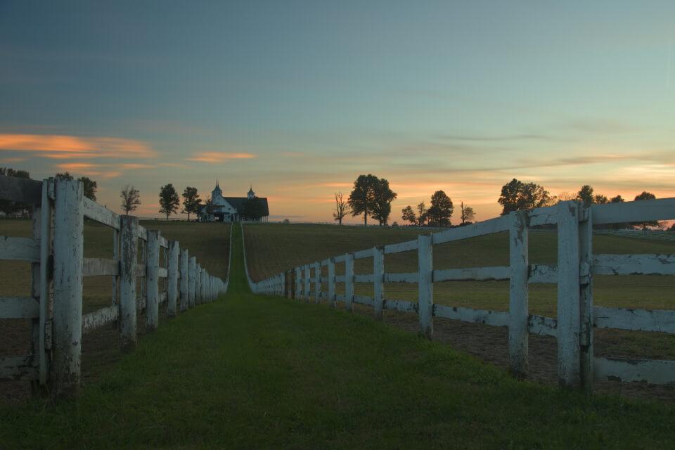 レキシントン牧場写真3.jpg