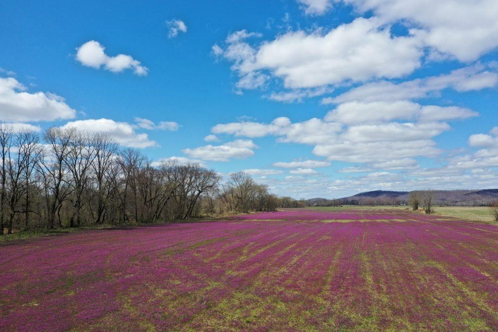 アメリカの春の田舎~ドローン空撮