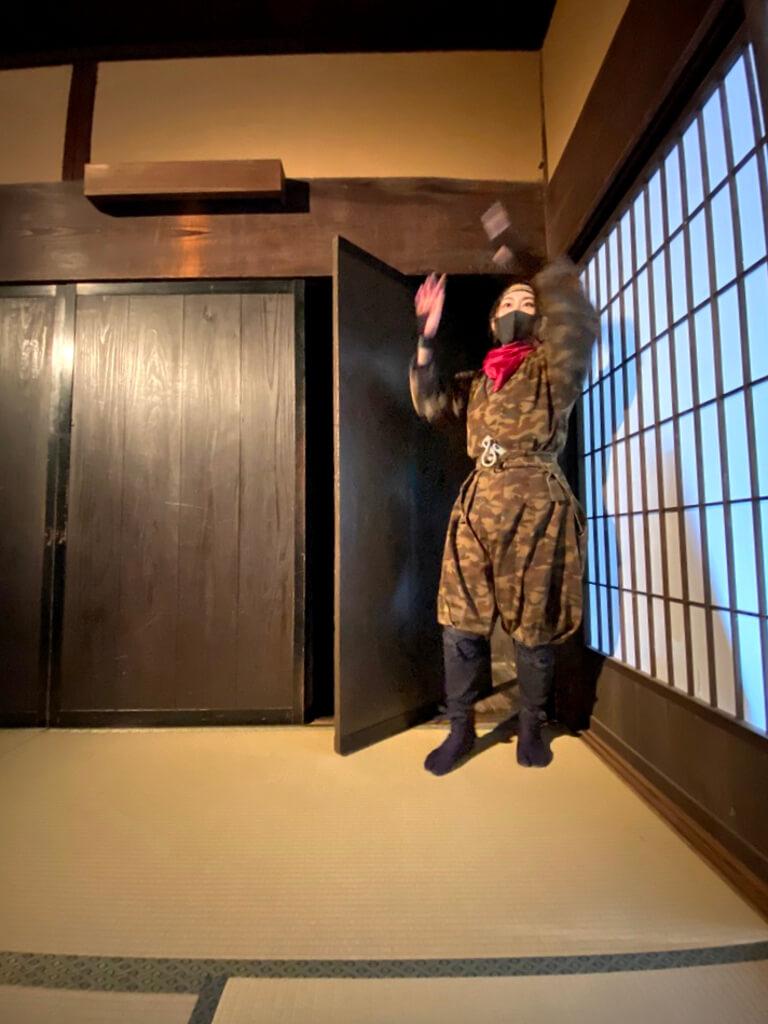 伊賀流忍者ショーと博物館の写真