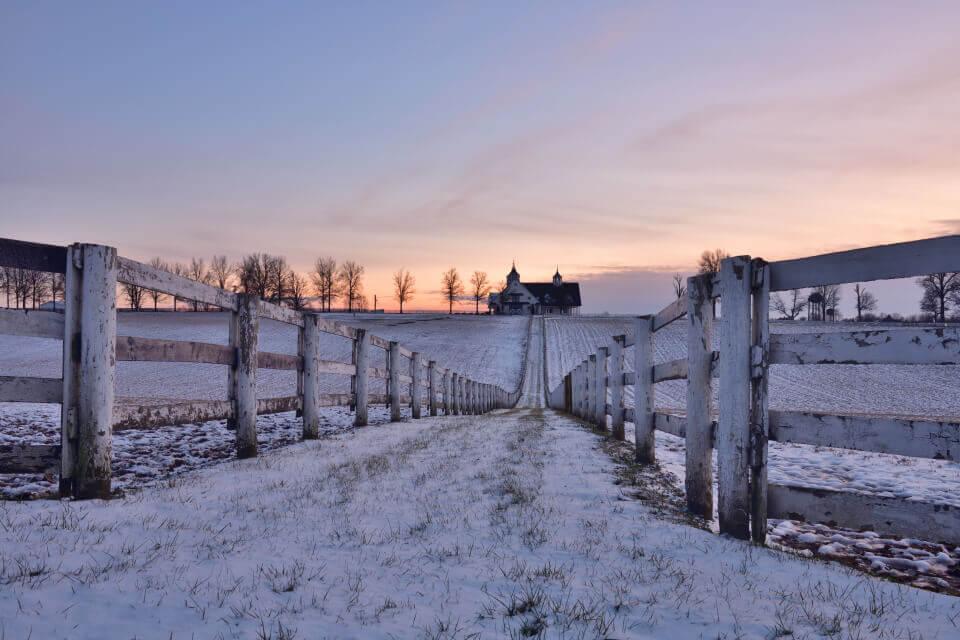 レキシントン馬牧場の写真