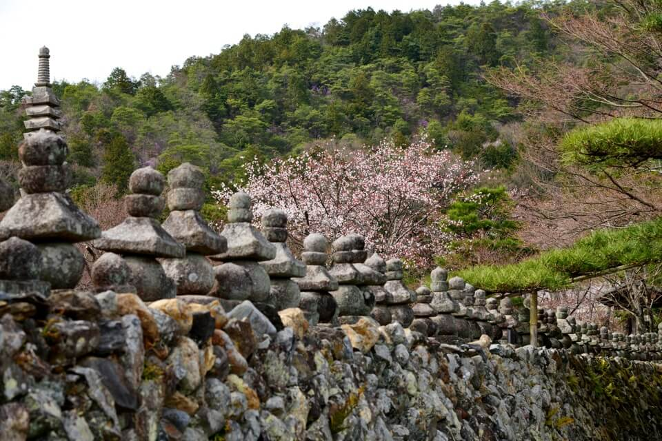 仏野念仏寺の写真