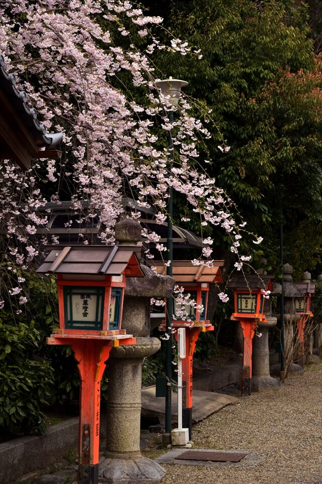 八坂神社・祇園神社の写真