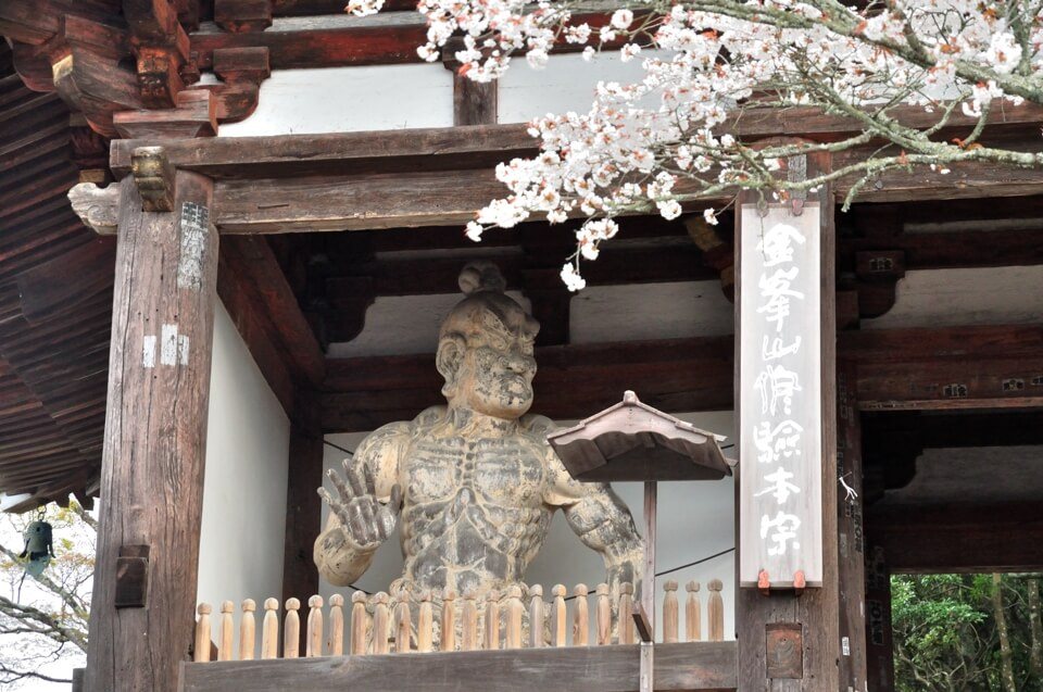 吉野山千本桜の写真