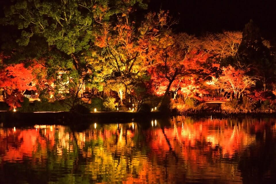 大覚寺門跡・旧嵯峨御所の写真