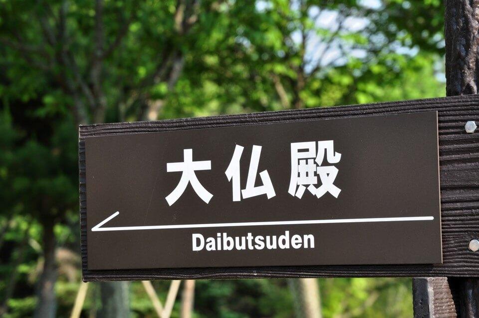 奈良公園の鹿写真