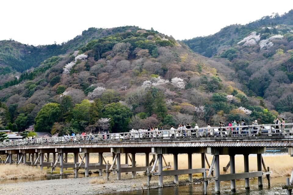 嵐山・渡月橋の写真