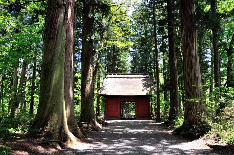 戸隠神社奥社の写真