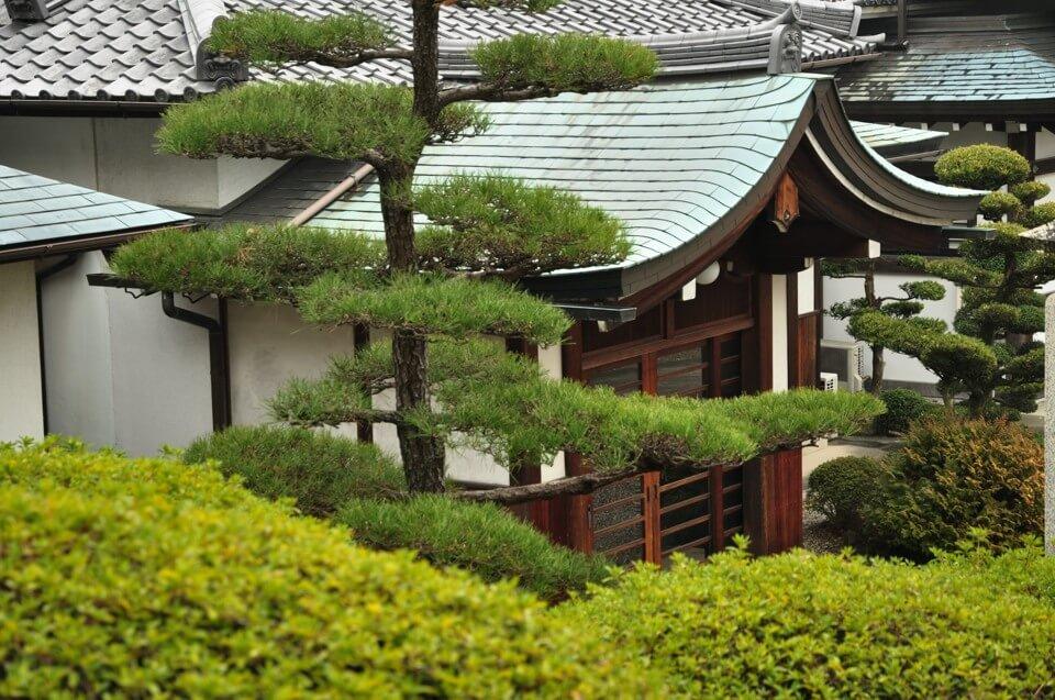 日泰寺の写真