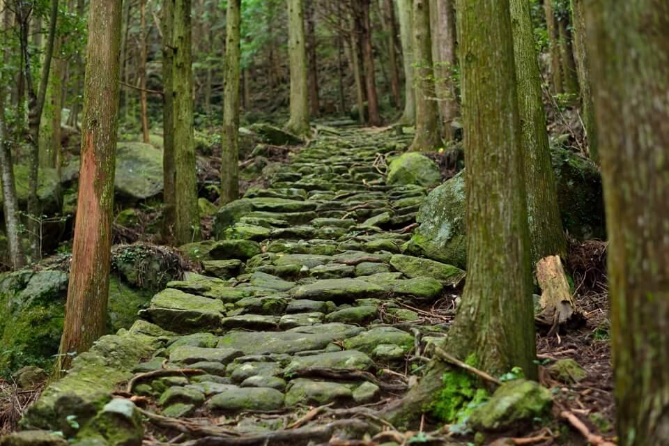 熊野古道の写真