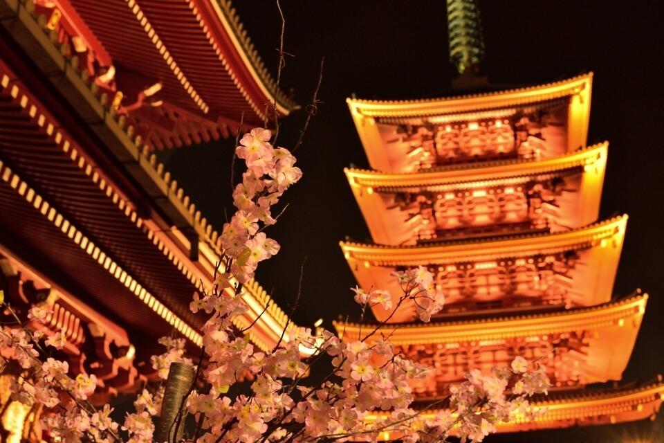 浅草寺の夜景写真