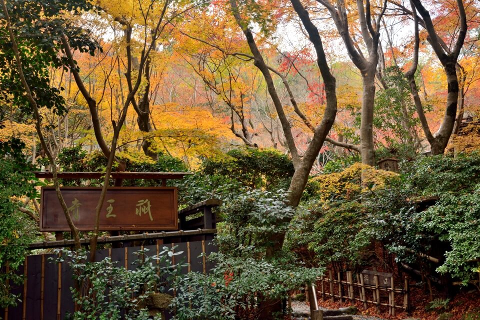 祇王寺の紅葉写真