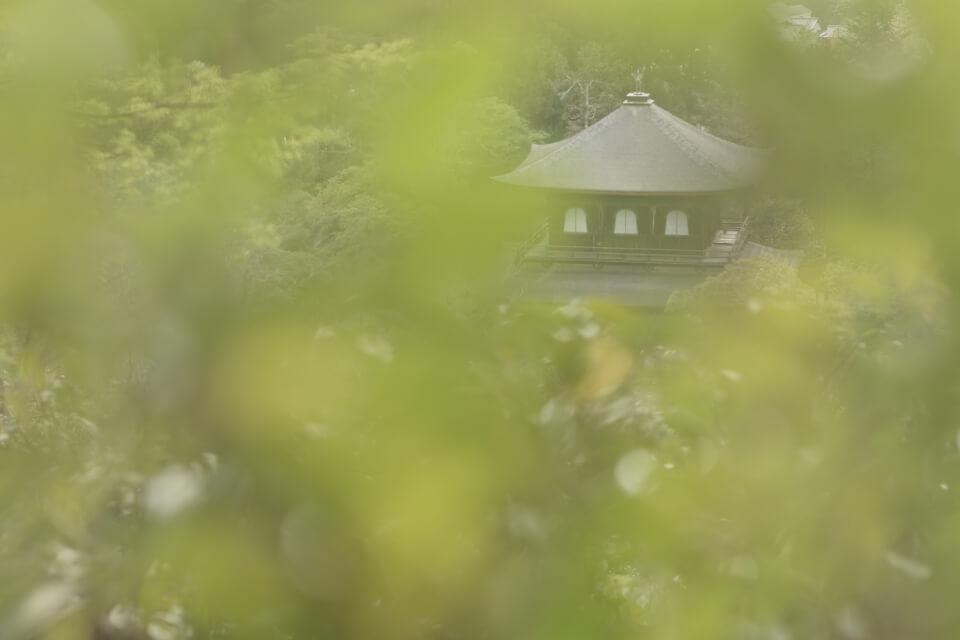 銀閣寺の写真には銀色がなく
