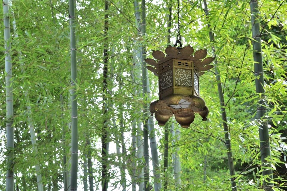 鎌倉長谷寺の観光写真
