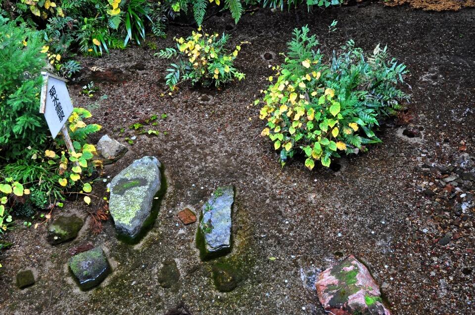 養老の滝・菊水泉の写真