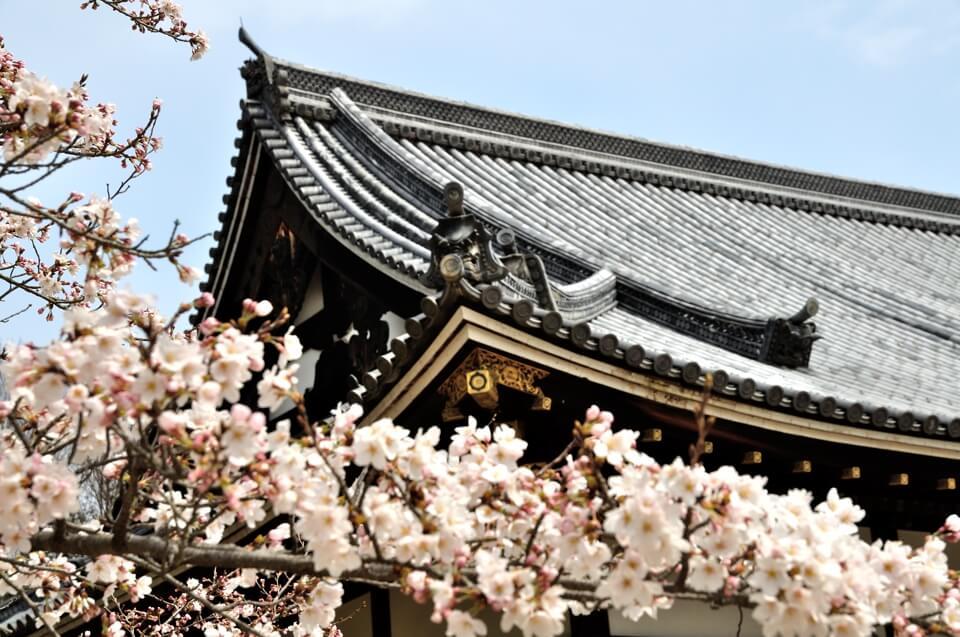 仁和寺御殿庭園の写真