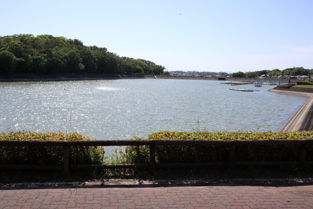 ぼたが池公園写真
