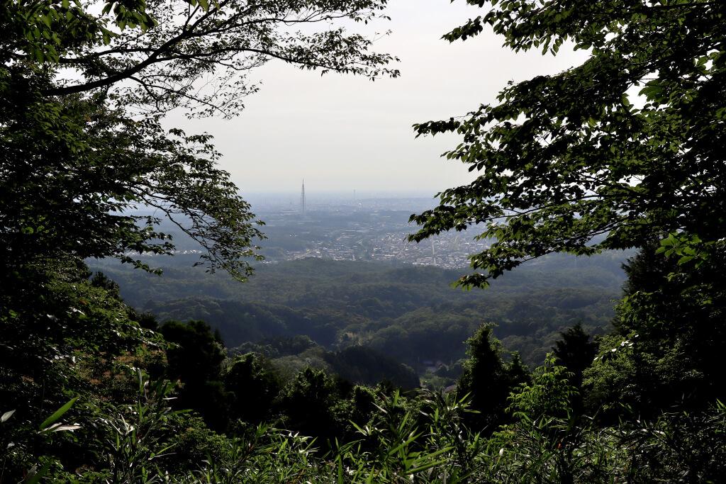 物見山から赤猿峠