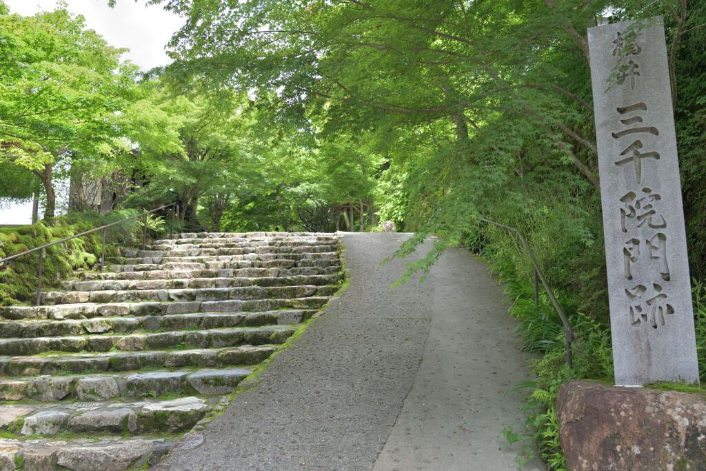 大原三千院の新緑写真