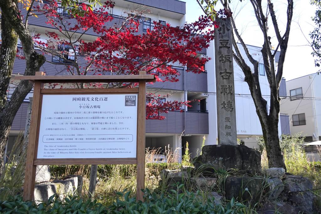 アメリカからの逆出向者のような日々が始まった、新鮮な日本生活
